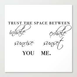 trust the space between Canvas Print