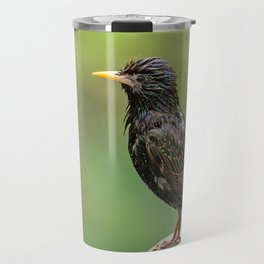 European Starling in Central Park Travel Mug
