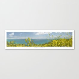 View from Mint Street Canvas Print