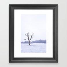 Portrait of a Tree Framed Art Print