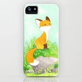 Petit renard iPhone Case