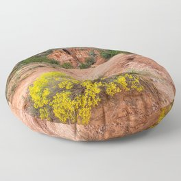 Palo Duro Canyon Cave and Wildflowers Floor Pillow