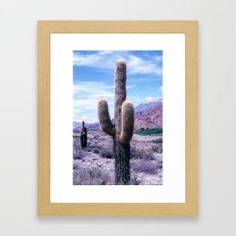 Cactus in Northern Argentina Framed Art Print