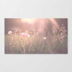June Evening Canvas Print