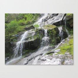 Hen Wallow Falls Canvas Print