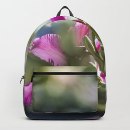 Translucid Turmoil Backpack