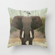 friends for life 03 Throw Pillow