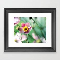 sunny flower ☀ Framed Art Print