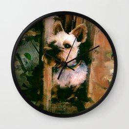 """COLE"" Wall Clock"