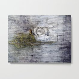 Eye of the Barn Metal Print