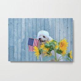 Patriotic poodle dog Metal Print