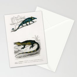 Vintage Print - Universal Dictionary of Natural History (1849) - Chameleon; Monitor Lizard Stationery Cards