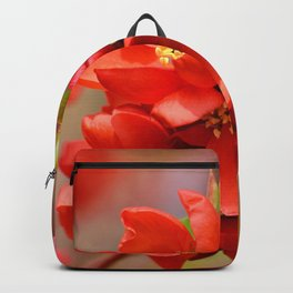 ornamental quince 0185 Backpack