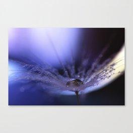 I love Dandelions Canvas Print