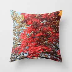 Fall maple trees of red leaves, in blue sky.  nature landscape photography. Throw Pillow