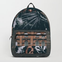 Panthera Tigris. Backpack