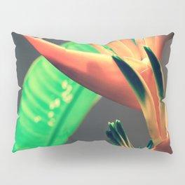Costa Rican Beauty Pillow Sham