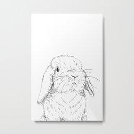 Curious Bunny Metal Print