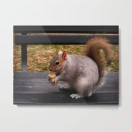 So What? I am on a banana diet. Metal Print