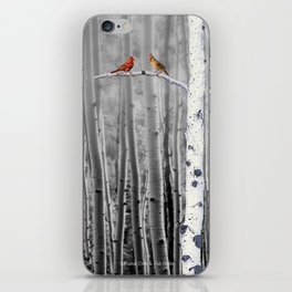 Red Cardinals in Birch Forest A128 iPhone Skin