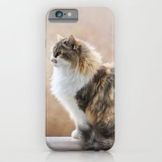 Cat on a Rail Slim Case iPhone 6s