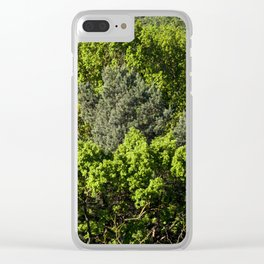 Deciduous forest Clear iPhone Case