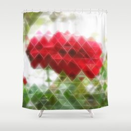 Red Rose with Light 1 Art Triangles 2 Shower Curtain