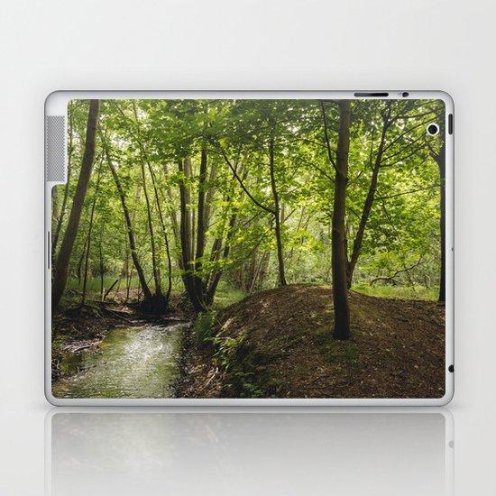 Small woodland stream. Laptop & iPad Skin
