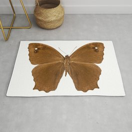 "Butterfly species Melanitis leda ""Common Evening Brown"" Rug"