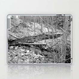 Stream Laptop & iPad Skin