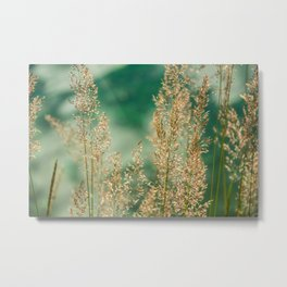Grass on the water Metal Print