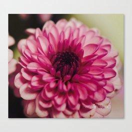 Pink Goodness Canvas Print