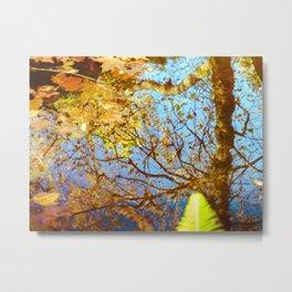 Autumn colors 2 Metal Print