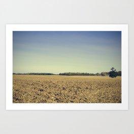 Lonely Field in Blue Art Print