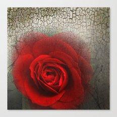 Desertrose Canvas Print