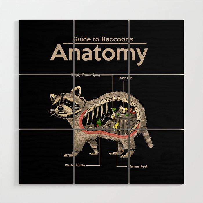 Anatomy of a Raccoon Wood Wall Art