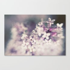 Lilac Haze Canvas Print