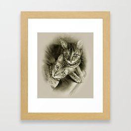 Bengal Kittens Drawing Framed Art Print