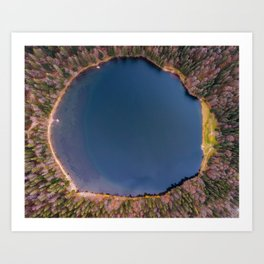 Feldsee Blackforest Art Print
