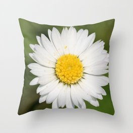 Closeup of a Beautiful Yellow and Wild White Daisy flower Throw Pillow