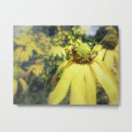 Bees on Yellow Flower Metal Print
