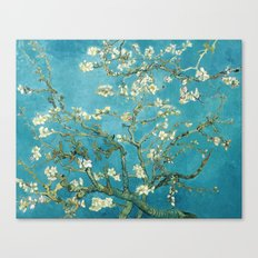 Almond Blossoms by Vincent van Gogh Canvas Print