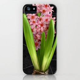 Pink Hyacinth Hydroponics (tryptic 3/3) iPhone Case