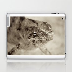 Surprise Me Laptop & iPad Skin