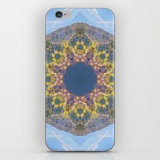 Canyon Lake  iPhone & iPod Skin
