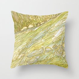Eno River 18 Throw Pillow