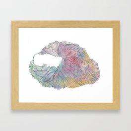 Coral shell Framed Art Print