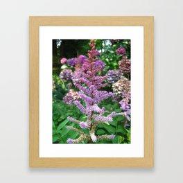 Flower at the New York Botanical Garden Framed Art Print