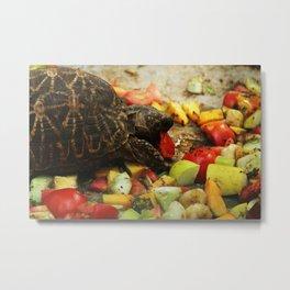 Colorful Food !! Metal Print