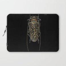 Insecte long avec antennes colors fashion Jacob's Paris Laptop Sleeve